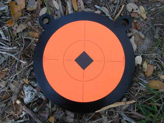 10 Inch Gong Target
